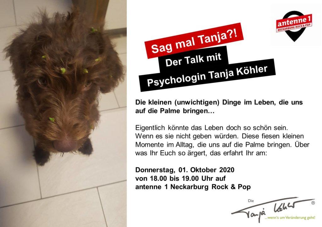 Radiopsychologin Tanja Köhler kleine Dinge großer Ärger